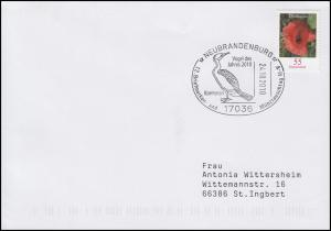 Kormoran - Vogel des Jahres 2010, EF Brief SSt Neubrandenburg 24.10.2010