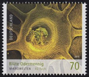 3193 Mikrowelten - Blüte Odermennig 70 Cent **