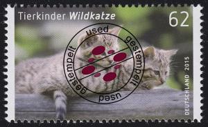 3125 Tierkinder: Wildkatze O