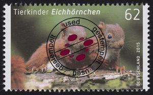 3124 Tierkinder: Eichhörnchen O