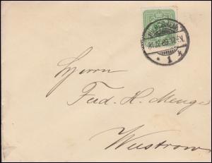 39 Ziffer 3 Pfennig als EF auf Drucksache HILDESHEIM 31.12.1889 nach Wustrow