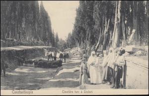 Levante Konstantinopel Cimeliere turc a Sculari / Kinderfriedhof, 2.9.1910