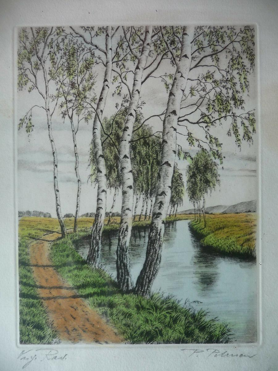 Orig. Druckgraphik Farbradierung Birken am Fluss signiert Petersen ? 1