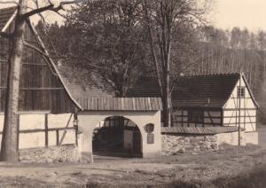 Orig. Foto Lochbauer Hof b. Plauen Vogtland 1959