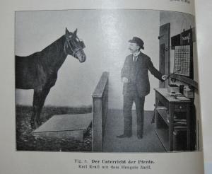 Ziegler – Die Seele des Tieres - 1916