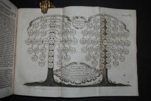 Voit - Theologia moralis ex solidis probatorum - 1769