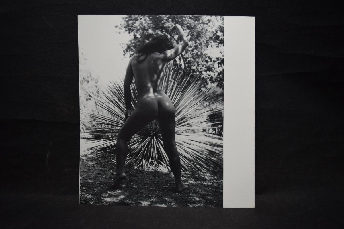 ANDRÉ KRETZ - CANTATE A NAUSICAA - WIDMUNG - ORIGINALZEICHNUNG - 1980 - FOTOS 11