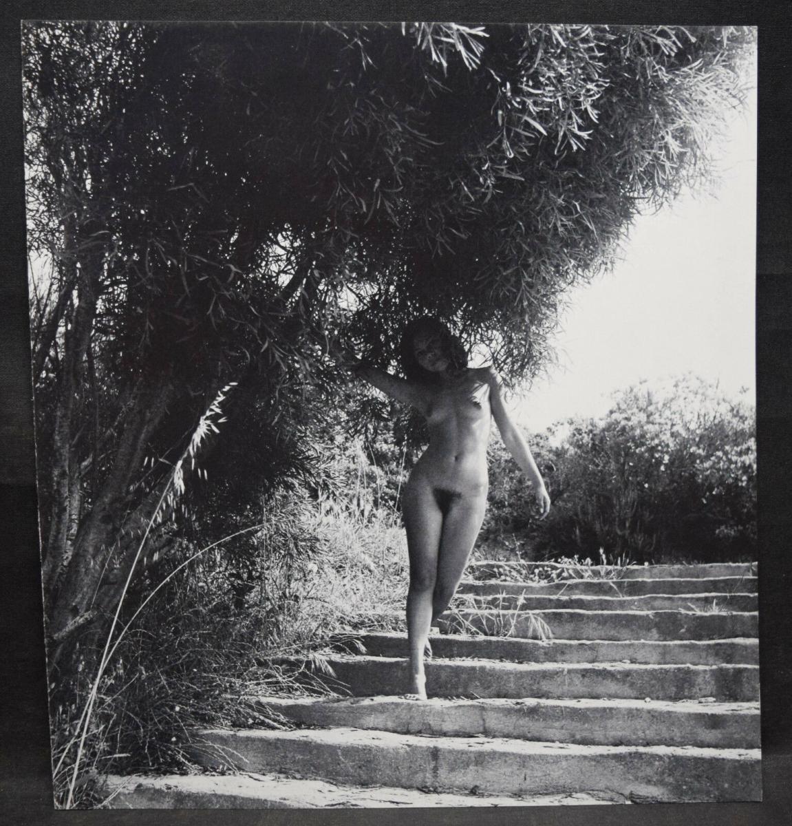 ANDRÉ KRETZ - CANTATE A NAUSICAA - WIDMUNG - ORIGINALZEICHNUNG - 1980 - FOTOS 5