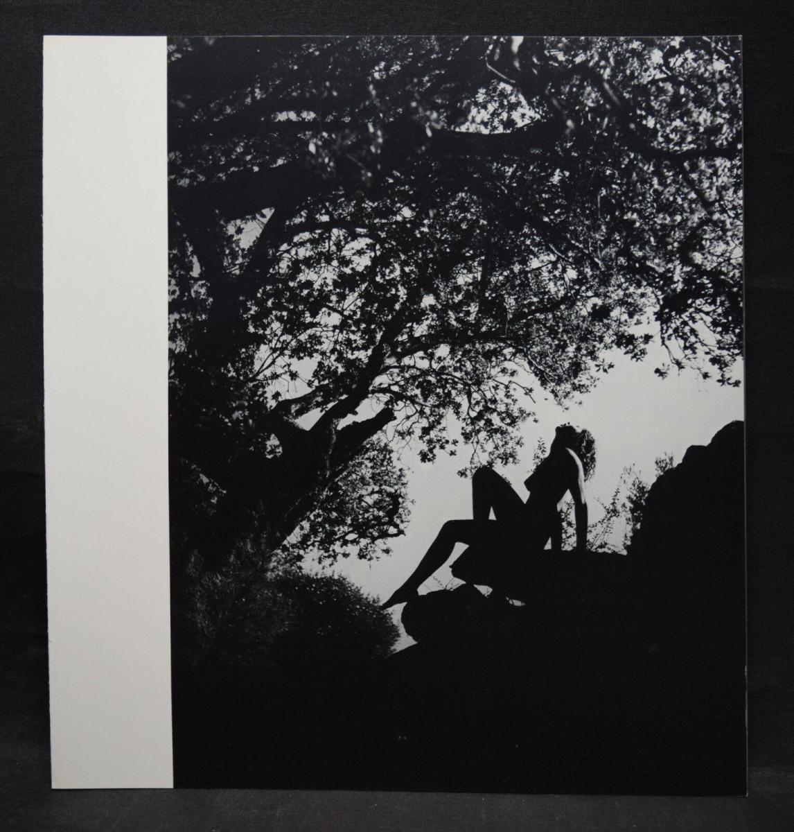 ANDRÉ KRETZ - CANTATE A NAUSICAA - WIDMUNG - ORIGINALZEICHNUNG - 1980 - FOTOS 6