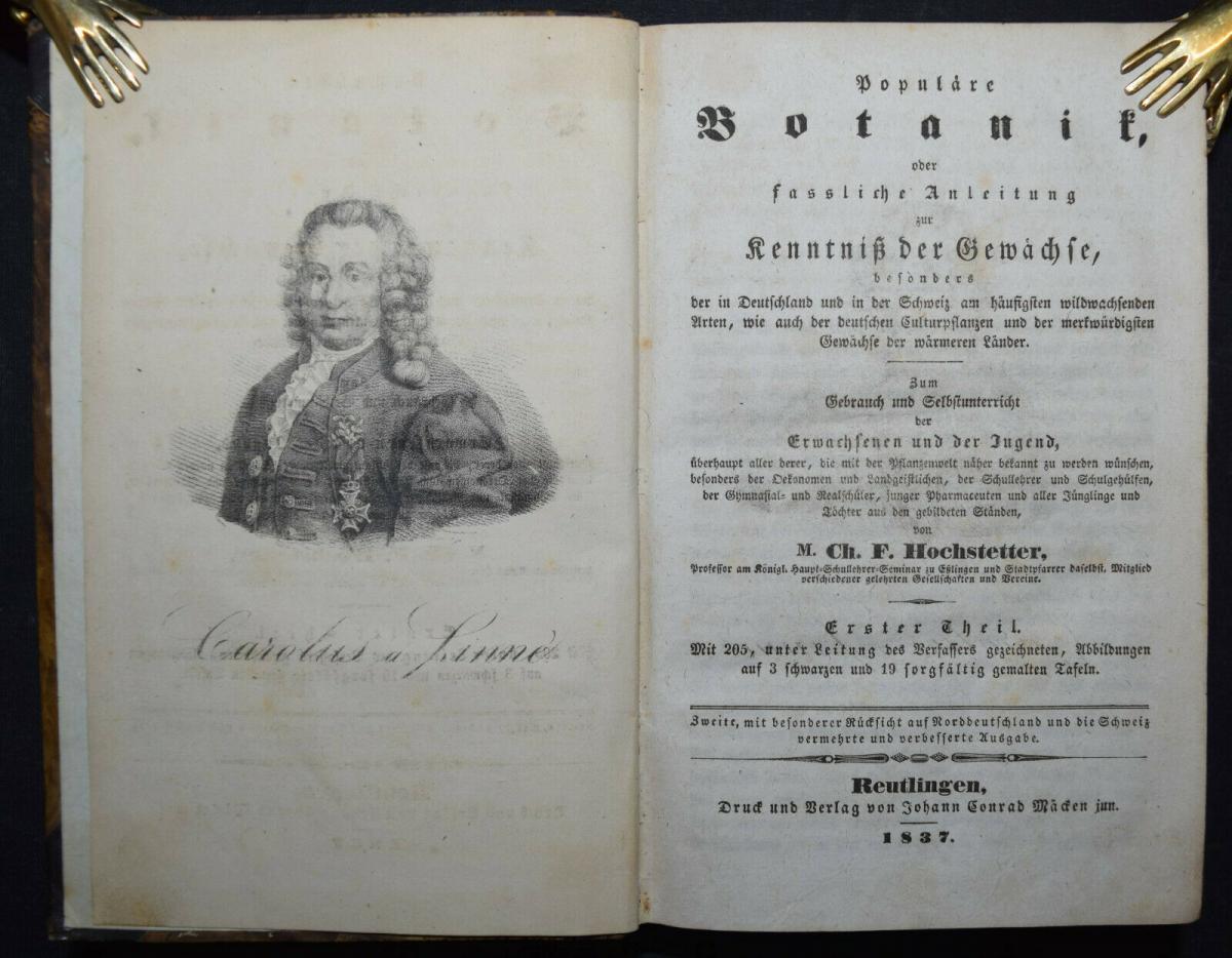 POPULÄRE BOTANIK - 1837 - CH. F. HOCHSTETTER - HANDKOLORIERTE TAFELN 2