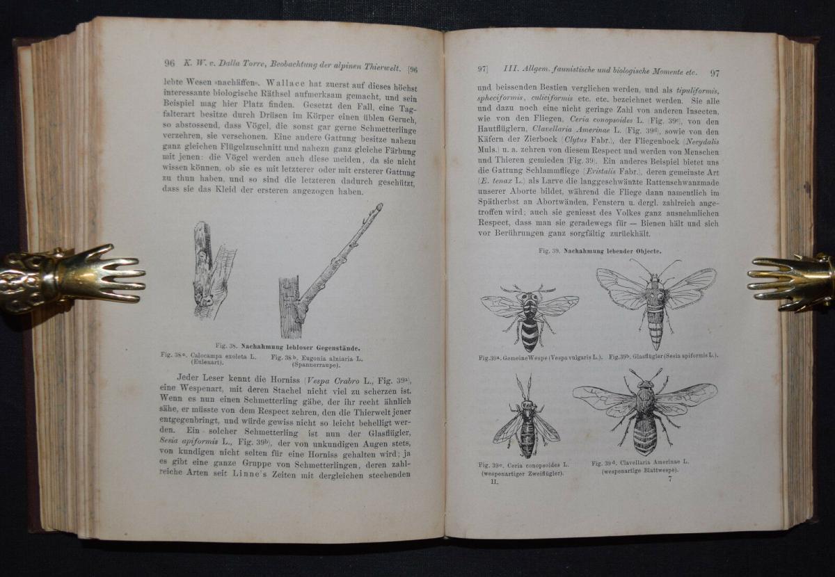 ALPEN-REISEN 1882 - Anleitung zu wissenschaftlichen Beobachtungen.. - Alpinistik 9