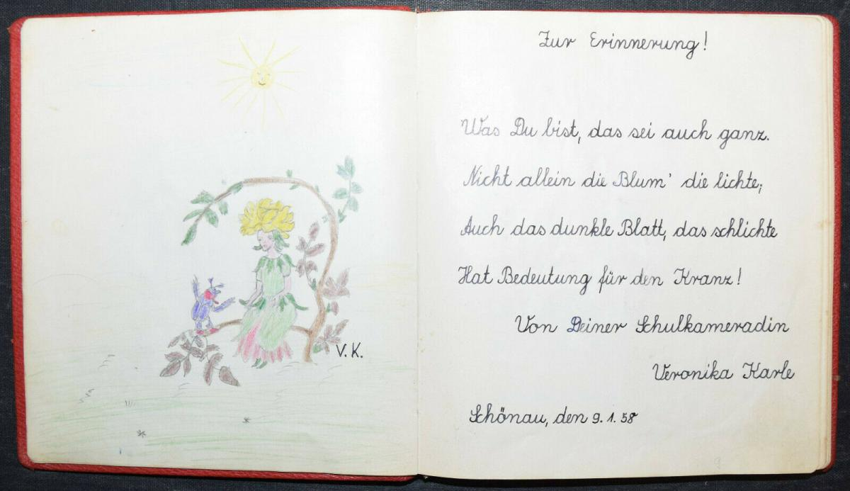 ALBUM AMICORUM - FREUNDSCHAFTS-ALBUM - POESIE-ALBUM - 9 ALBEN - 1879-1965 6