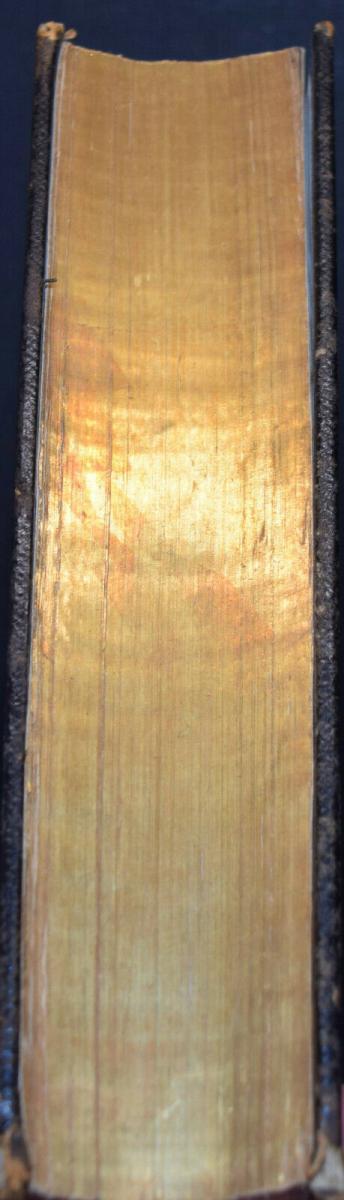 BIBLIA GERMANICA – DIE BIBEL ODER DIE GANZE HEILIGE SCHRIFT - UM 1845 3