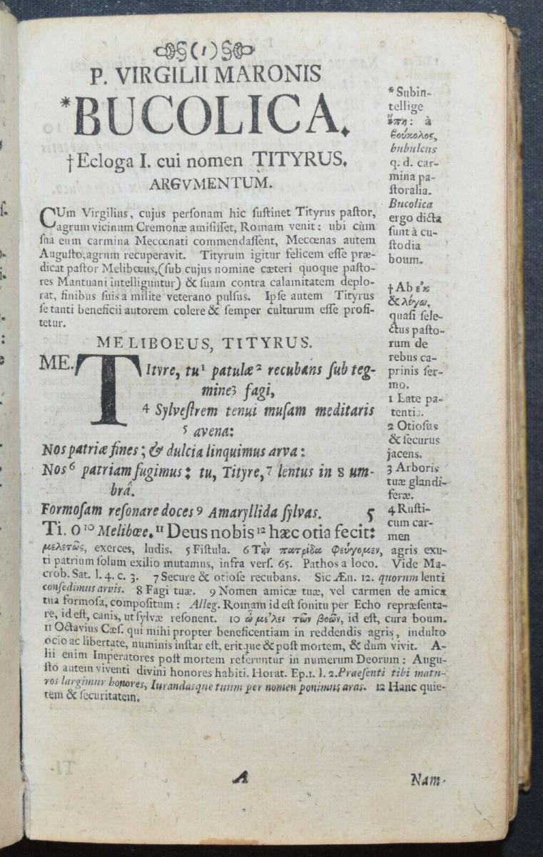 PUBLIUS MARO VIRGILIUS - OPERA OMNIA - 1732 - ALTPHILOLOGIE - ANTIKE 3