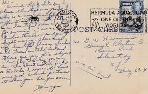 Ansichtskarte Bermuda: Hamilton 1951 - Vogel im Stempel