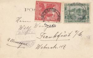 Tasmania: Post card Launceston 1904 to Frankfurt