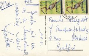 French colonies: Burundi: post card palm tree to Belgium