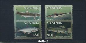 SLOWENIEN 1997 Satz FISCHE postfrisch (85295)