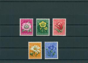 NIEDERLANDE 1952 Nr 588-592 postfrisch (201775)
