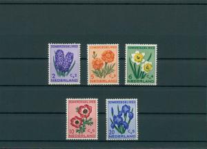 NIEDERLANDE 1953 Nr 607-611 postfrisch (201779)