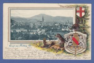AK Gruß aus Freiburg mit Wappen, dekorativ im Rahmen, gelaufen 1901