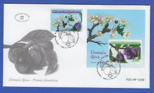 Bosnien Kroatische Post Mostar 2009 Mi.-Nr. 273 und Block 20 FDC Pflaume