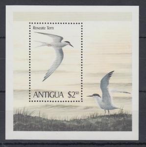 Antigua Mi.-Nr. Block 51 postfrisch ** / MNH Seeschwalbe