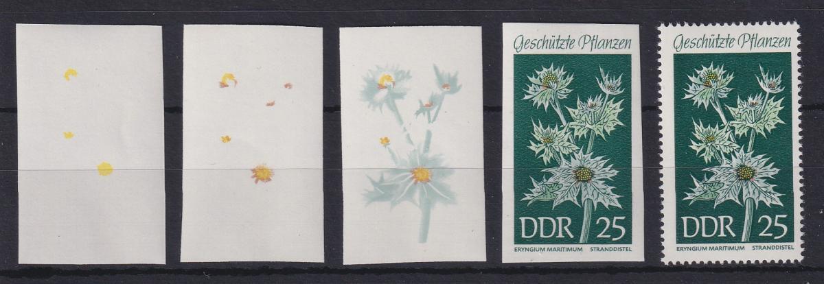 DDR 1969 kpl. Serie Phasendrucke Mi.-Nr. 1460 Stranddistel **  0