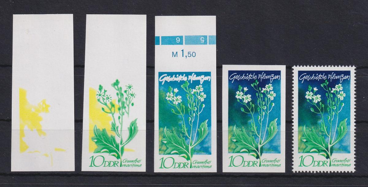 DDR 1970 kpl. Serie Phasendrucke Mi.-Nr. 1563 Pflanzen Seekohl 10 Pfg **  0