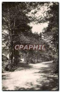 Ansichtskarte AK Malesherbes (Loiret) Buthiers Chemin d Auxy