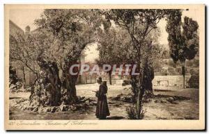 Ansichtskarte AK Jerusalem Jardin De Gethsemane