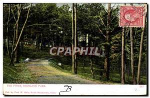 Ansichtskarte AK The Pines Highland Park