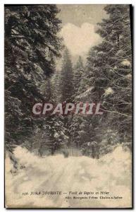 Ansichtskarte AK Arbre Jura Foret de sapins en hiver