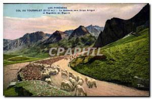 Ansichtskarte AK Les Pyrenees col du Tourmalet la Descente vers Gripp Artigue et Bagneres de Bigorre