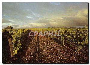 Moderne Karte Hennessy Cognac Un Vignoble Charentais en Grande Champagne