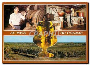 Moderne Karte Cognac (Charente) Maitre de Chat et distillerie de Cognac le Vignoble Charentais
