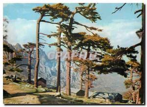 Moderne Karte Couleurs et Lumiere de France La Corse oasis de Beaute Col de Bavella