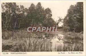 Ansichtskarte AK Fontainebleau La Foret La Mare aux Fees