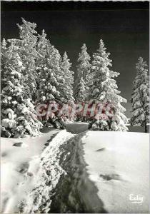 Moderne Karte Image de chez nous en hiver La Foret sous la neige