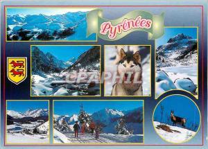 Moderne Karte Les Pyrenees Images des Pyrenees Husky Chien