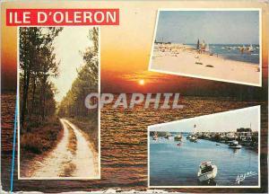 Moderne Karte Sur la cote de Lumiere Ile D'Oleron