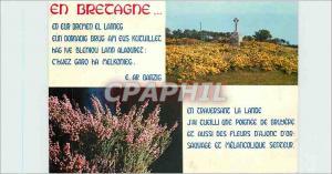 Moderne Karte Fleurs de Bretagne Ajonc et Bruyere