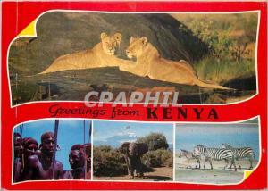 Moderne Karte Popular Kenya scenes Kenya Lion Zebre Zebra