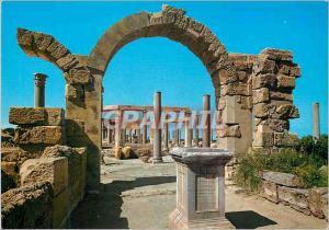 Moderne Karte Leptis magna (Libya) the market