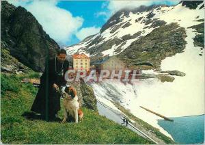 Moderne Karte Passage of the gr s bernardo m 2476 monk with his dog Chien