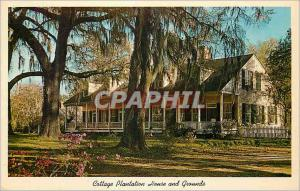 Moderne Karte Cottage Plantation House and Grounds