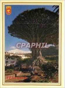 Moderne Karte Islas canarias icod de los vinos drago milenario Tenerife
