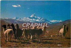 Moderne Karte Altiplano Boliviano Monte Huayna Potosi
