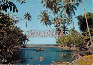 Moderne Karte Martinique Paysage tropical