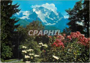 Moderne Karte Jungfrau Berner Oberland